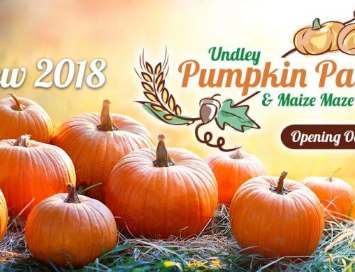 Opening October!
